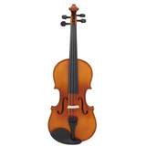 1/2AV03 violin + tiger stripe (bright) black accessories